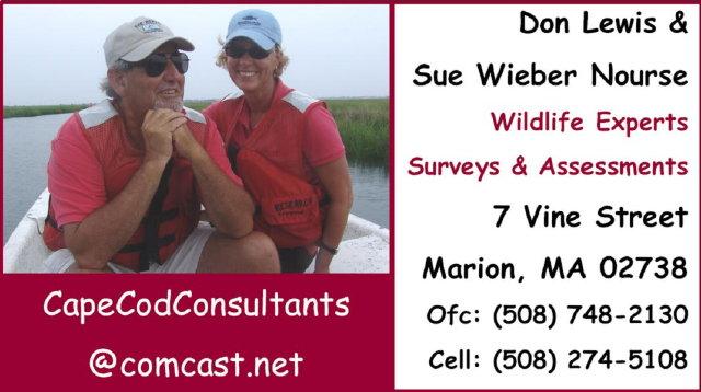 Cape Cod Consultants 640